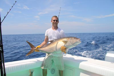amberjack-pirate-small.jpg