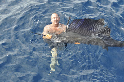 sailfish-horn2.jpg