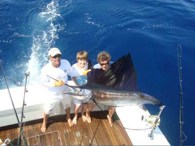 sailfish-mesher.jpg