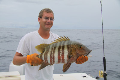 snapper-matt2small.jpg