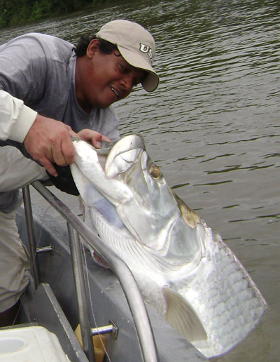 tarpon-bubba-close.jpg